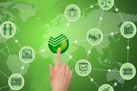 Сбербанк открывает спецсчета для госзакупок, которые уже зарезервированы для всех клиентов банка и участников рынка госзаказа.
