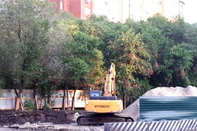 На улицах Мельникайте и Дамбовской вырубят 363 дерева