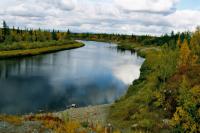 Одиннадцать штрафов вынесено на Ямале в результате экологического надзора