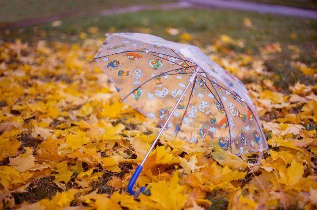 Зонт терпит только ручную стирку.