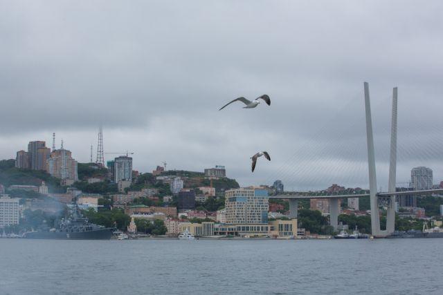 Приморье - море, чайки, мосты и сложные проблемы.