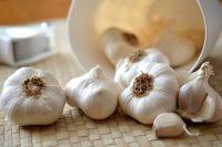 В первую декаду месяца сажают озимый чеснок.