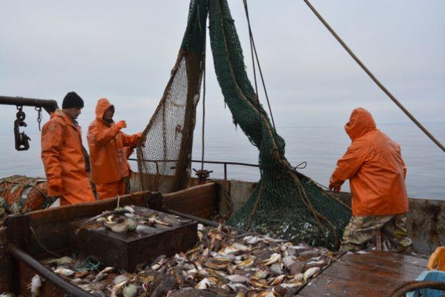 Рыбная ловля для рыбаков-любителей продолжится до 20 октября.