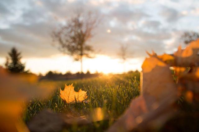 Синоптики сделали уточнение по «бабьему лету» и резкому похолоданию