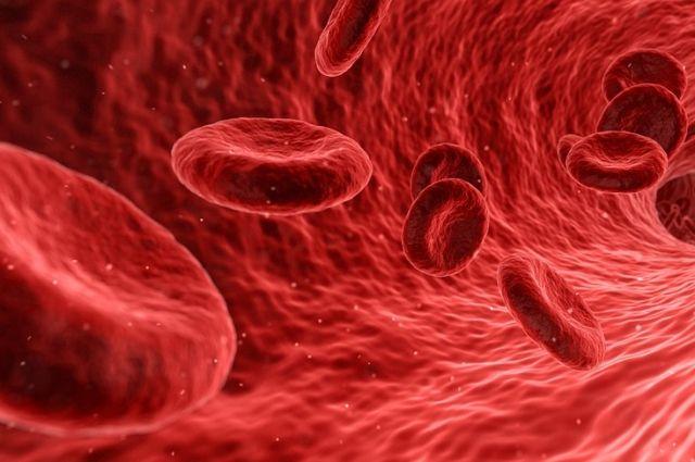 Самая популярная группа крови - первая.