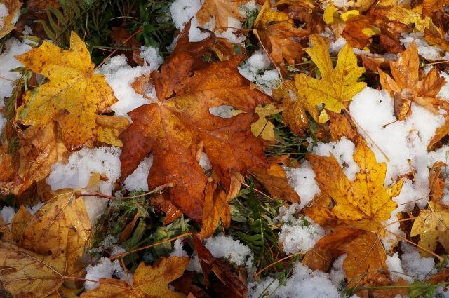 Температурный фон октября продолжает находиться выше климатических норм.