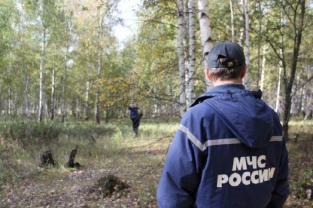 В поисках задействовано 27 человек и семь единиц техники.