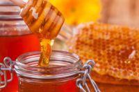 10 октября: Савватий Пчельник, что можно и чего нельзя делать