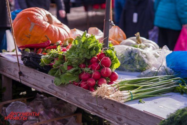 На ярмарке можно будет купить овощи свежего урожая.