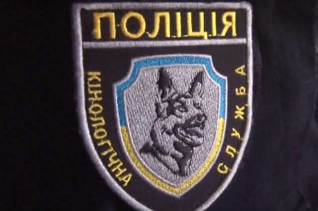 Полиция нашла пропавшего под Запорожьем ребенка в Днепропетровской области
