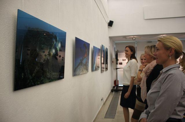 Музей Калининграда подготовил выставку о тайнах затонувших кораблей.
