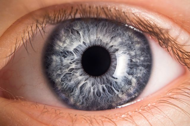 Смотреть в оба. Какие болезни можно определить по радужке глаза