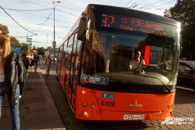 В день матча сборных РФ и Швеции в Калининграде продлят работу автобусов.