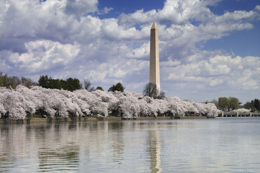 Монумент Вашингтона в США — 169 метров. До постройки Эйфелевой башни памятник первому президенту Америки был самым высоким сооружением на Земле.