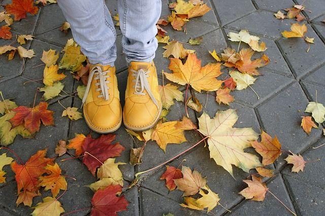 Осенняя уборка проводится в течение октября