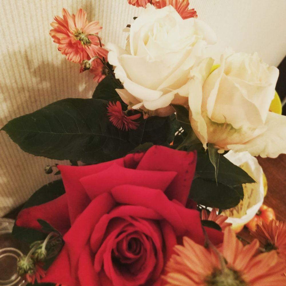 Осенние розы.