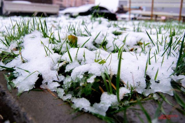 В Тюмени на Покров выпал первый снег: горожане делятся фотографиями