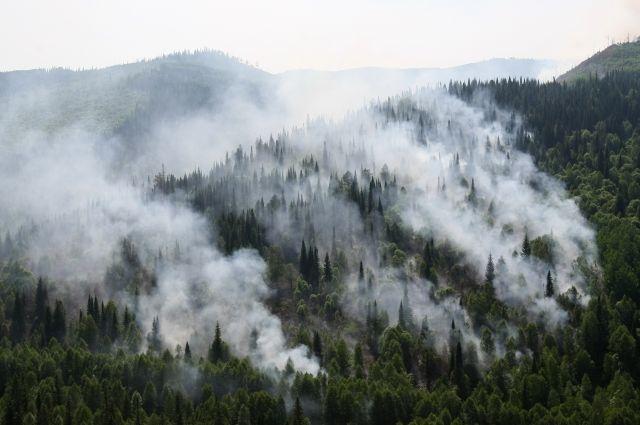 Крупные пожары действовали в Нижневартовском, Советском и Сургутском лесничествах.