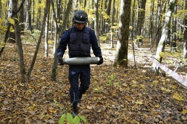 Завершена проверка и очистка от боеприпасов всех 39 населенных пунктов, расположенных вокруг арсенала.