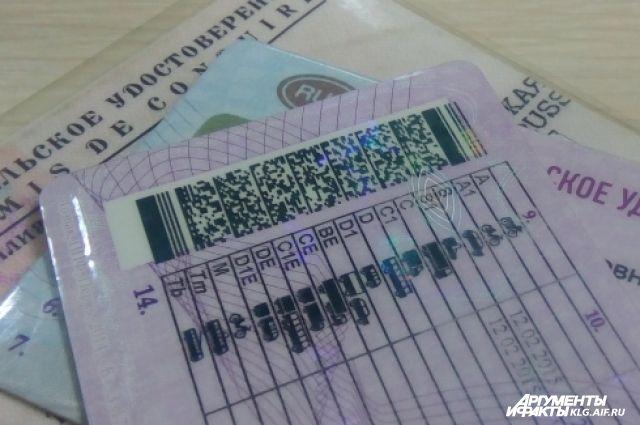 Калининградскому водителю грозит тюремный срок за поддельные права.