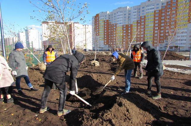 Тюменцы высадили в сквере им. Льва Ровнина «классные деревья»