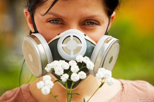 Украинцев предупреждают о вспышке аллергии