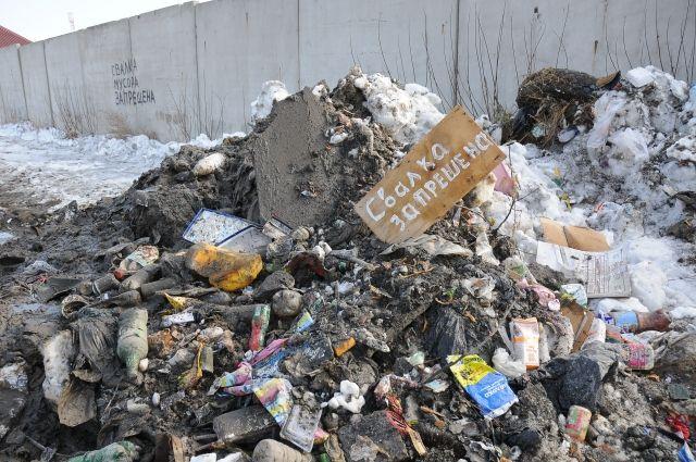 В Омске не редкость незаконные свалки.