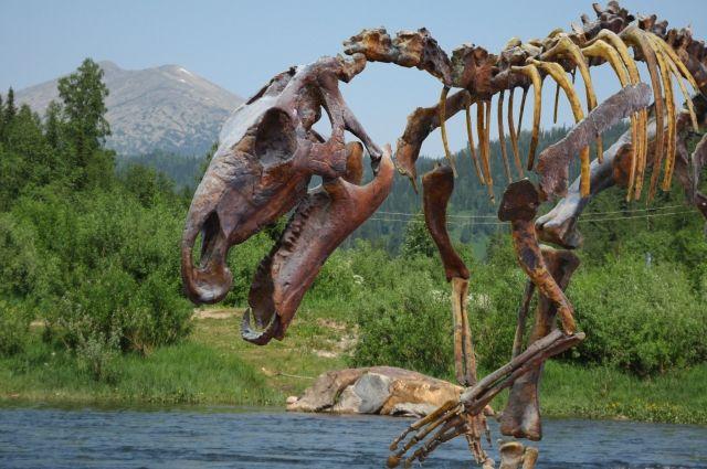 Горы Кузнецкого Алатау более 800 млн лет «наблюдают» за тем, как зарождалась жизнь в Кузбассе.