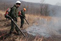 Огонь быстро распространялся по сухой траве и листьям.