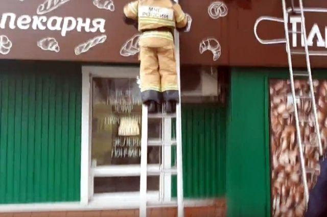 В Тюмени на козырек магазина из окна выпал мужчина