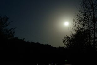 В поисках дороги мужчина забрел ночью на кладбище.