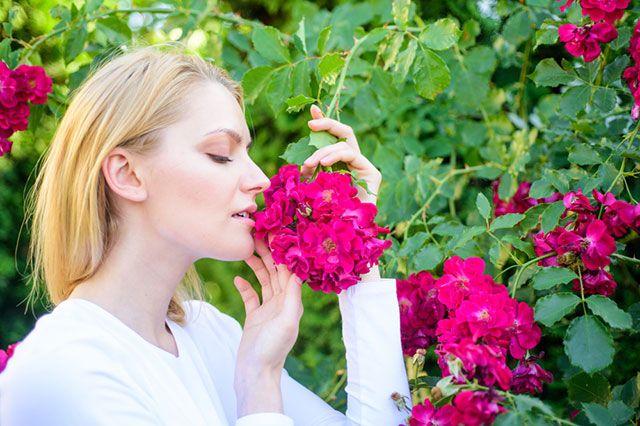 Услышать или почувствовать запах – как правильно? - Real estate
