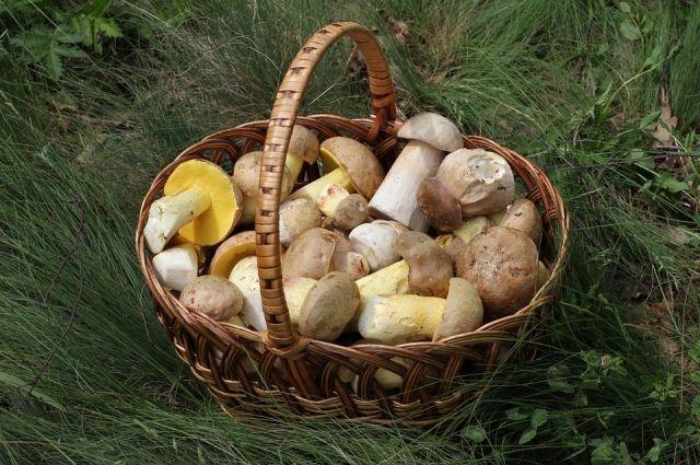 В старинном селе Верх-Юсьва Кудымкарского района проходит ежегодный фестиваль грибов.
