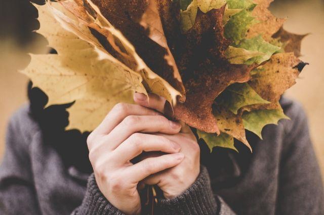 Осень еще побалует теплыми деньками.