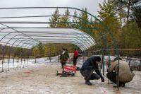 «Транснефть-Сибирь» сохранит объект культурного наследия в Югре