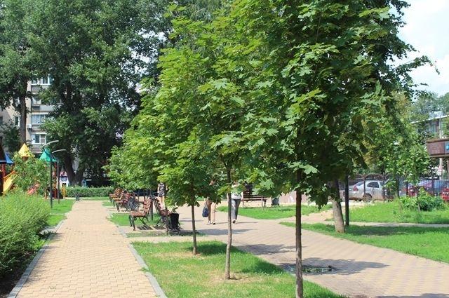 Горожане просят муниципалитет обрезать ветви.