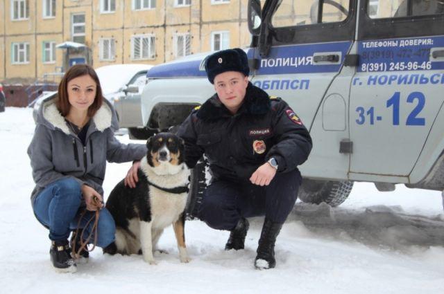 Новой хозяйкой собаки стала 23-летняя норильчанка, которая стала свидетелем происшествия.