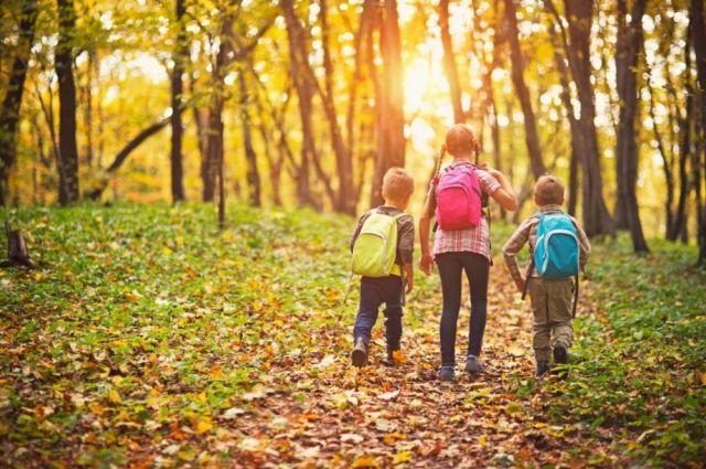 Школьники также смогут отдохнуть в лагерях с дневным пребыванием при школах.