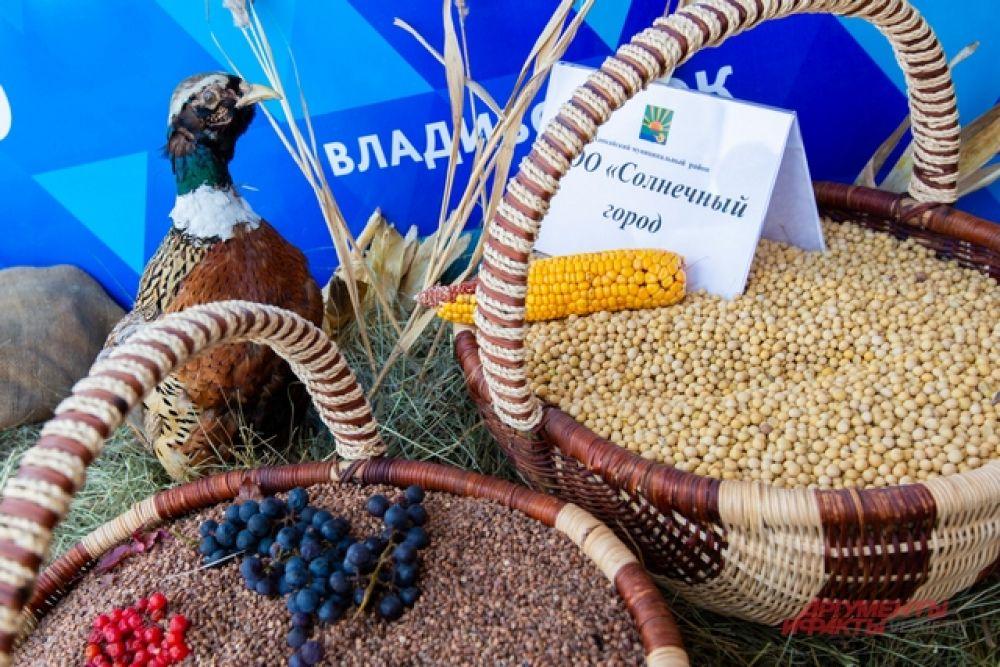 Богат Ханкайский район на фазанов и зерно.