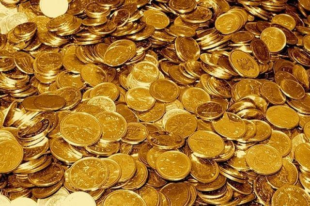Под Житомиром чета пенсионеров нашла на огороде древние драгоценные монеты