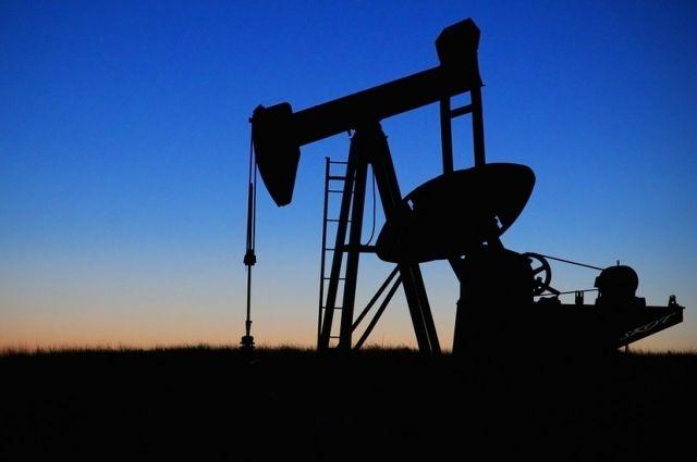 Представители тюменских нефтегазовых компаний отправятся в ОАЭ