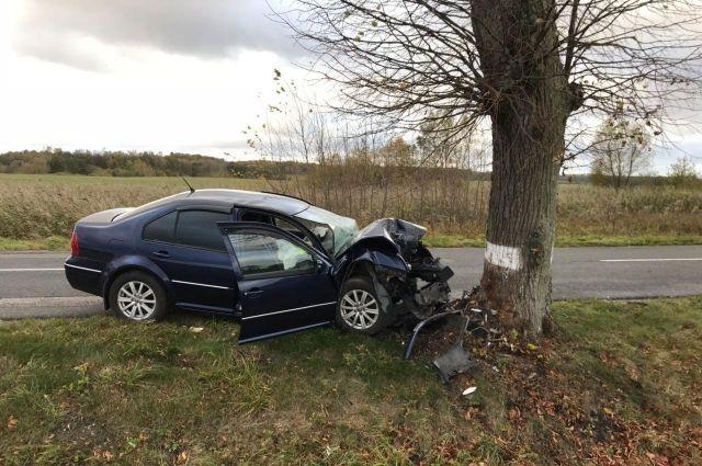 Под Калининградом после столкновния с деревом погибла автоледи.