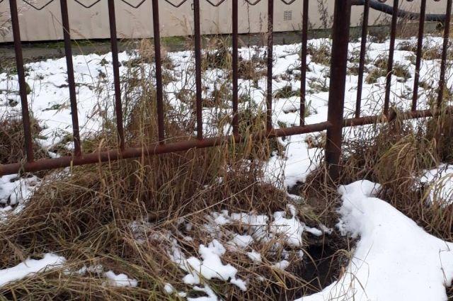 За разлив септика на кладбище Салехарда предпринимателя накажут штрафом