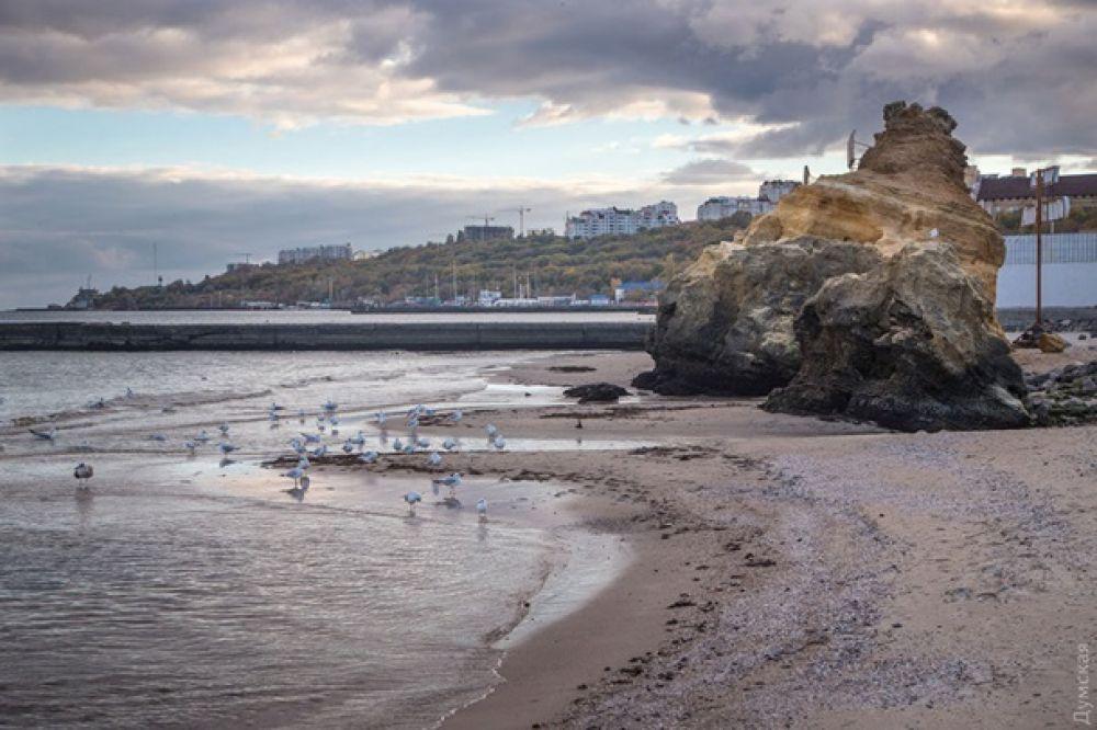 По данным ученых, уровень воды понизился приблизительно на 20 сантиметров, что привело к обнажению пляжей.