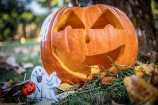 На Хэллоуин нужно обязательно приготовить блюдо из тыквы.