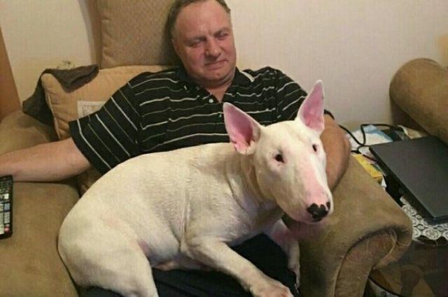 После того, как пропавшим чудом удалось выжить, пёс попал в больницу.
