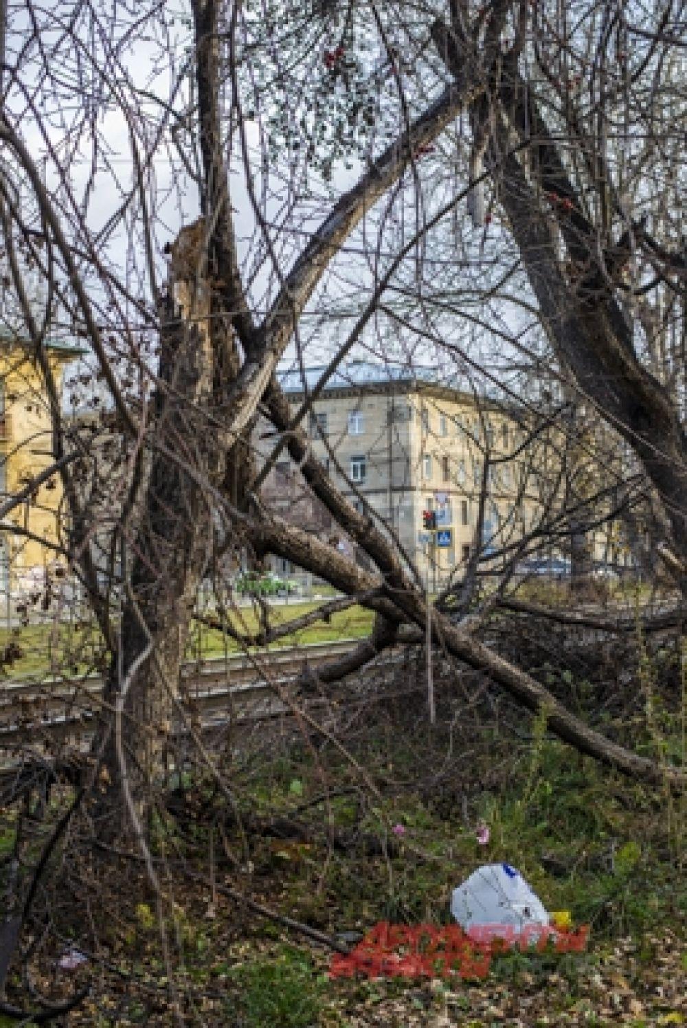 Разбушевавшаяся стихия испугала местных жителей.