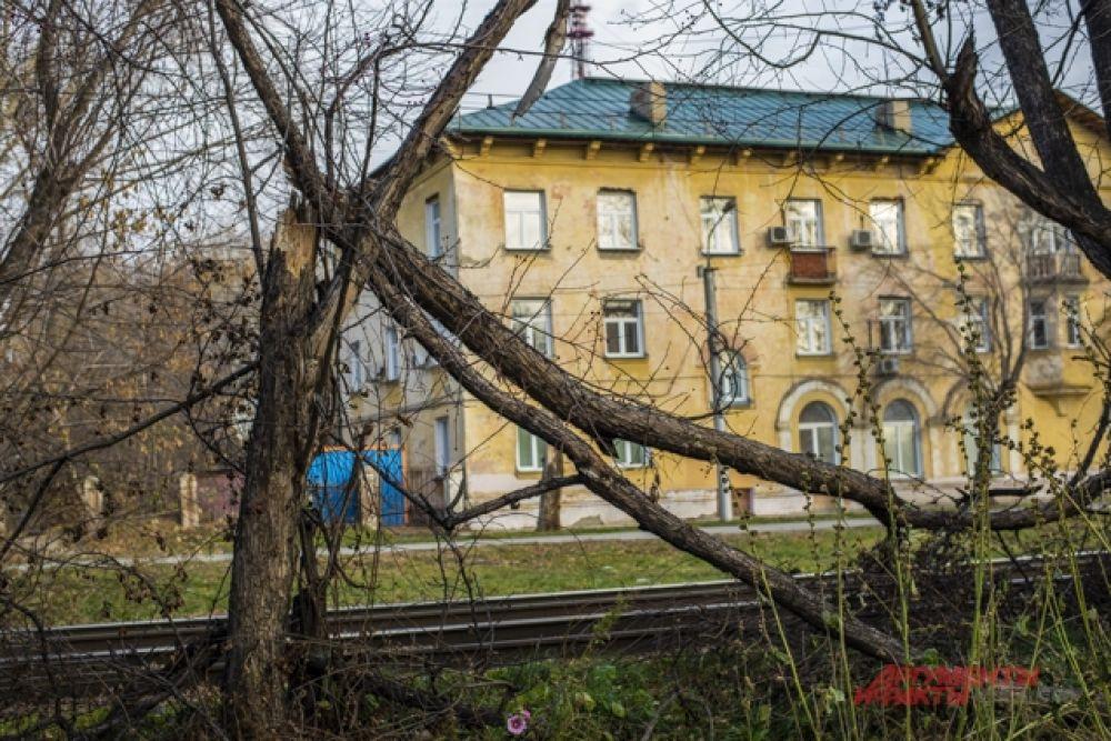 Некоторые жители мегаполиса просыпались ночью от сильного ветра, а утром обнаружили последствия. Например, поваленные деревья.