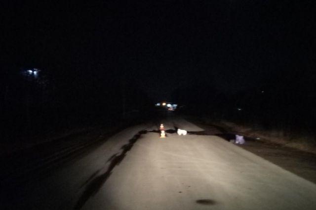В Оренбурге разыскивают водителя, насмерть сбившего пешехода.
