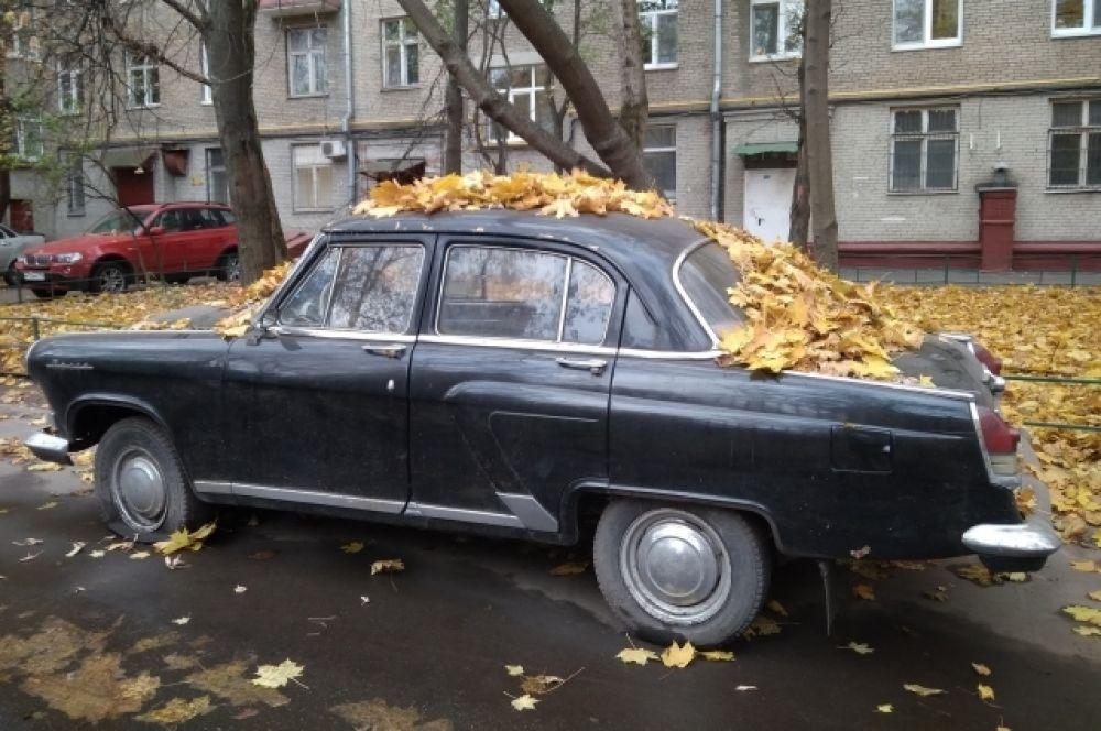 Людмила Кикало